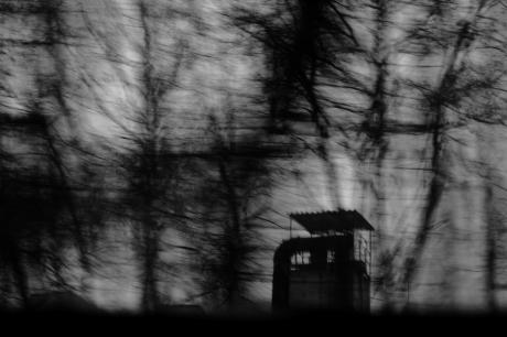 ragnarök [1/6] / 2010 / océ lightjet print / 40×30